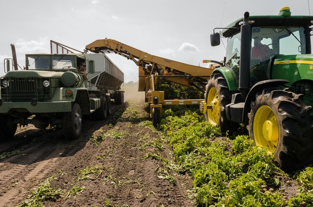 Agricoltura - Foto di John Lambeth da Pexels