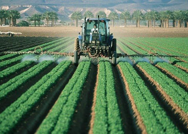 Agricoltura - Photo credit: Foto di skeeze da Pixabay