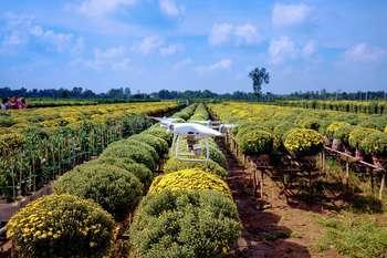 Bravo Innovation Hub Agrifood